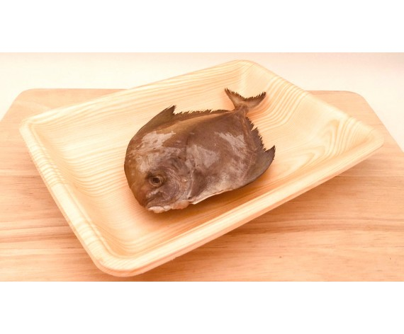 FROZEN SMALL BLACK POMFRET | GUTTED & CLEANED | 100/200GM | 1PC/PKT | 冰冻去肚黑鲳/武鲳 | SG