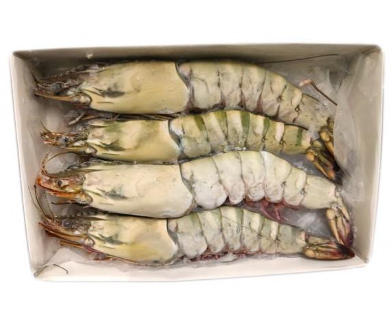 FROZEN JUMBO SEA TIGER PRAWN | 4PCS | 30% GLAZING | 1KG/PKT | 冷冻巨无霸海老虎虾 | MY