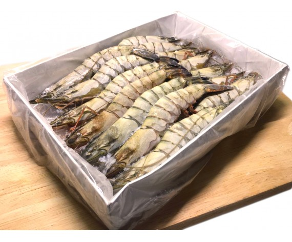 TIGER PRAWN | 21/25 | 30% GLAZING | 1KG/PKT | 冷冻老虎虾 | ID