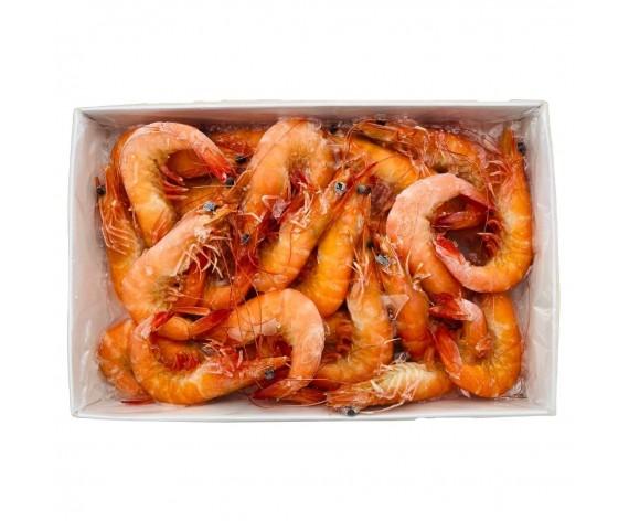 LIVE FROZEN COOKED SHRIMPS | 30% GLAZING |31/40 | 1KG/PKT | 冷冻熟虾(美人虾) | MY