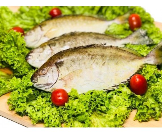 RABBIT FISH WHOLE (70-80GM) (1KG/PKT) 整白肚鱼